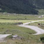 Dolinami pod szczytami Alp- 11
