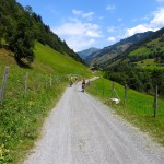 Dolinami pod szczytami Alp- 166