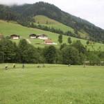 Dolinami pod szczytami Alp- 173