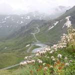 Dolinami pod szczytami Alp- 70