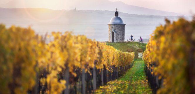 podróż rowerowa Morawskie winne ścieżki