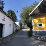 Morawskie winne ścieżki- 79
