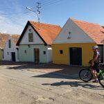 Morawskie winne ścieżki- 81