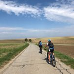 Morawskie winne ścieżki- 85