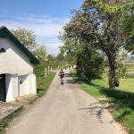 Morawskie winne ścieżki- 88