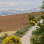 Szlak św. Jakuba Hiszpania- 9