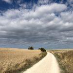 Szlak św. Jakuba Hiszpania- 117