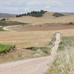 Szlak św. Jakuba Hiszpania- 12