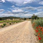 Szlak św. Jakuba Hiszpania- 46