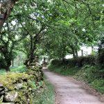 Szlak św. Jakuba Hiszpania- 69