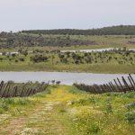 Portugalia - Siła w Spokoju (wiosną)- 36