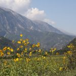 Albania (jesienią)- 107
