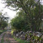 Albania (jesienią)- 58
