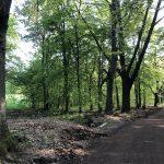 Dolina Pałaców i Ogrodów- 67