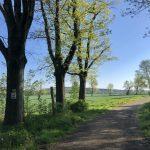 Dolina Pałaców i Ogrodów- 68