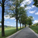 Dolina Pałaców i Ogrodów- 72