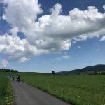 Dolina Pałaców i Ogrodów- 73