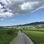 Dolina Pałaców i Ogrodów- 75