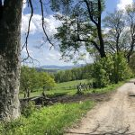 Dolina Pałaców i Ogrodów- 78