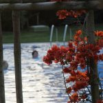 Wielkie Piękno - Rota Vicentina... południowym wybrzeżem Portugalii- 35