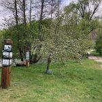 Suwalszczyzna - Green Velo- 78